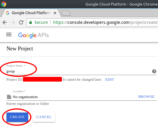 How-To Guide for Creating Oauth credentials for Google Voice gvsip